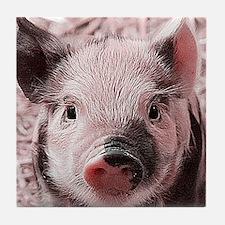 sweet piglet, pink Tile Coaster