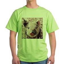 sweet piglet, pink T-Shirt