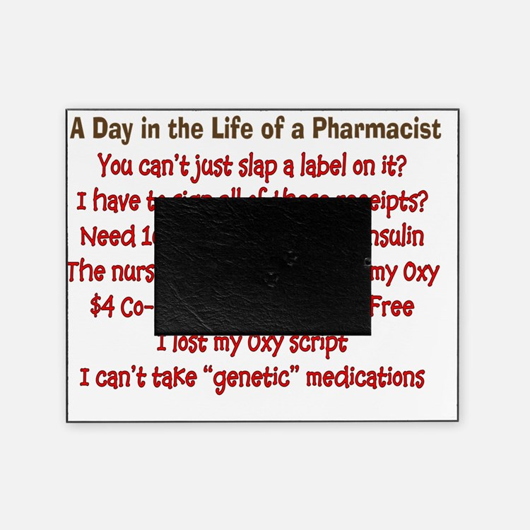 a day in life of pharmacist Picture Frame