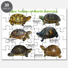 Box Turtles of North America Puzzle