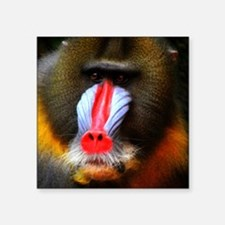 """THE PRINCELY BABOON Square Sticker 3"""" x 3"""""""