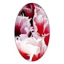 pink tulip mini poster Decal