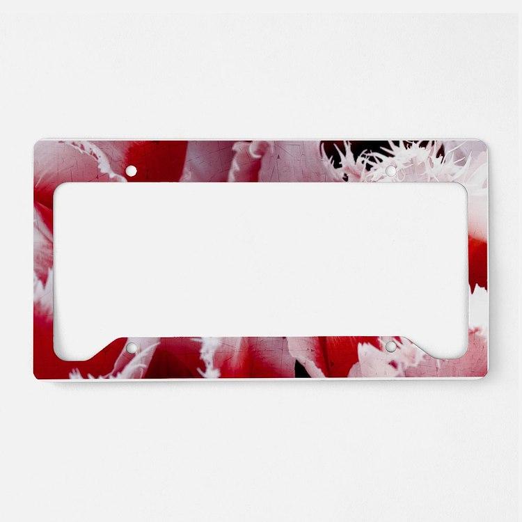 pink tulip sm framed print 4 License Plate Holder