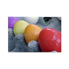 Easter Eggs Rectangle Magnet