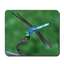 Dragonfly-1 Mousepad