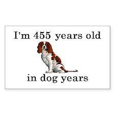 65 birthday dog years springer spaniel 2 Stickers