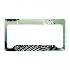 Bentley2 License Plate Holder