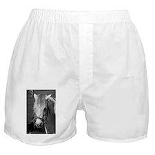 Bad Hair Day Pony Boxer Shorts