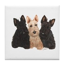 Scottish Terrier - 3 puppies Tile Coaster