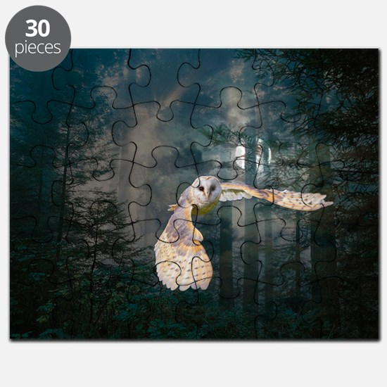 Owl at Midnight Puzzle