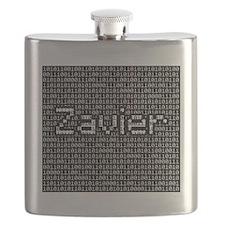 Zavier, Binary Code Flask