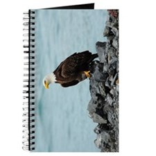 NookSleeve_eagle_3 Journal