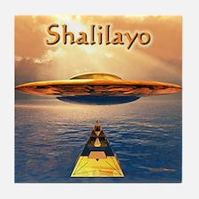 Shalilayo Tile Coaster