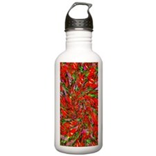 Red Infusion Water Bottle