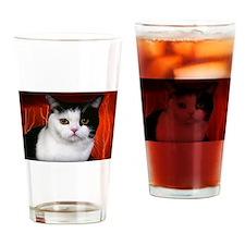 judgment cat use dark Drinking Glass