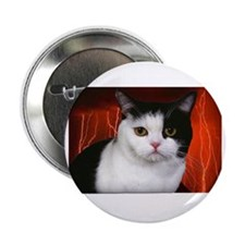 "judgment cat use dark 2.25"" Button"