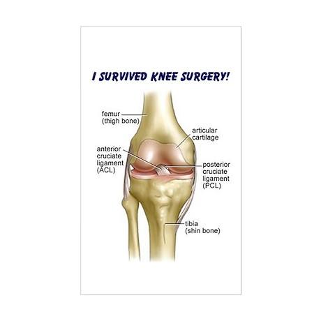 Knee Surgery Gift 9 Rectangle Sticker