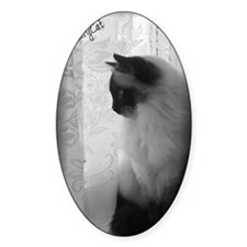 DollyCat Atmosphere BW Decal