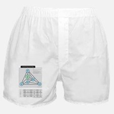 Chord Progression Map Boxer Shorts