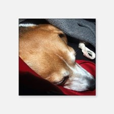 "Let Sleeping Dogs Lie Square Sticker 3"" x 3"""