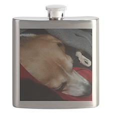 Let Sleeping Dogs Lie Flask