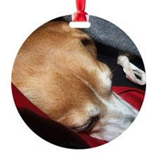 Let Sleeping Dogs Lie Ornament