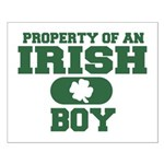 Property of an Irish Boy Small Poster