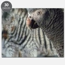 DQ Timneh Puzzle