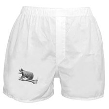 Possums Speed Bumps White Boxer Shorts