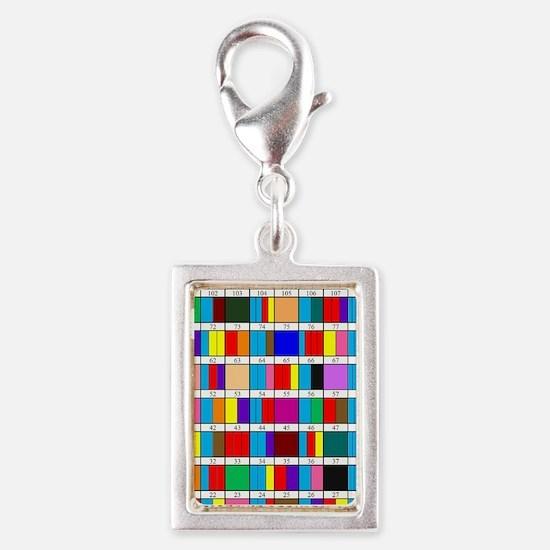 Octal Prime Factorization Ch Silver Portrait Charm