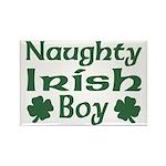 Naughty Irish Boy Rectangle Magnet (10 pack)