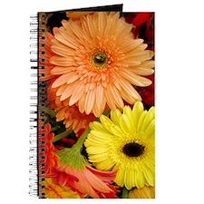 ipodcase-gerberadaisies Journal