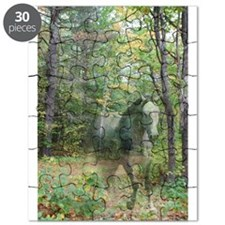 Ghost Horse Puzzle