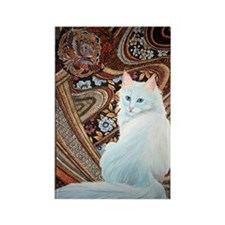 White Turkish Angora thin Rectangle Magnet