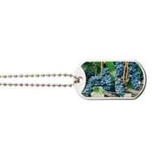 Wine Country Grapes Dog Tags
