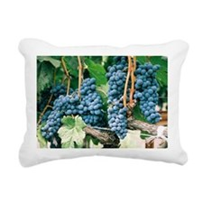Wine Country Grapes Rectangular Canvas Pillow