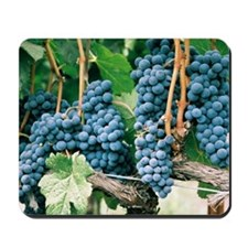 Wine Country Grapes Mousepad