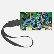 Wine Country Grapes Luggage Tag