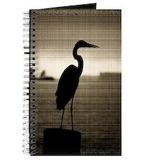 Great Blue Heron Journal
