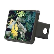 Cougar cub on rocks Hitch Cover