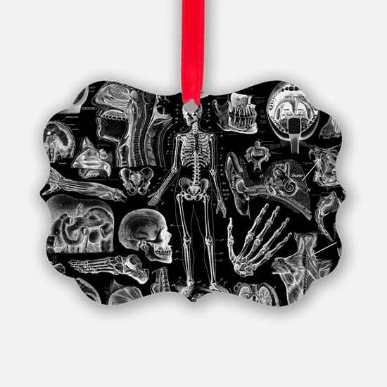 anatomy_black_pillow_cases Ornament