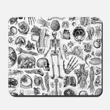 anatomy_W_queen_duvet Mousepad