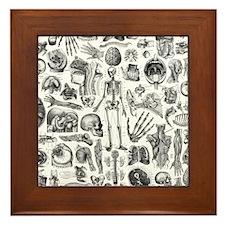 anatomy_W_queen_duvet Framed Tile