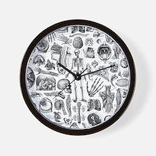 anatomy_W_queen_duvet Wall Clock