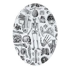 anatomy_W_twin_duvet Oval Ornament