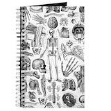 Anatomy Journals & Spiral Notebooks
