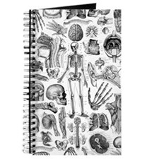 anatomy_W_twin_duvet Journal
