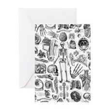 anatomy_W_twin_duvet Greeting Card