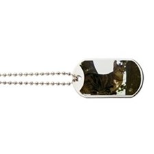 bag Dog Tags