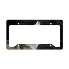 Howling timber wolf License Plate Holder